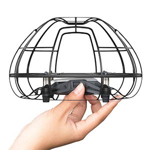 Spherical, all-around Protection Cage